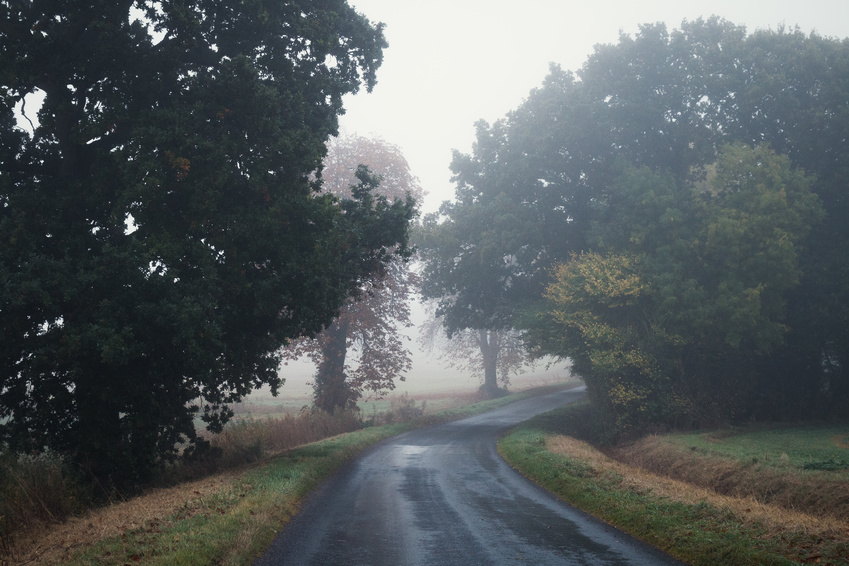 Misty road in Cambridgeshire