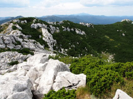 Veliki Risnjak National park, Croatia